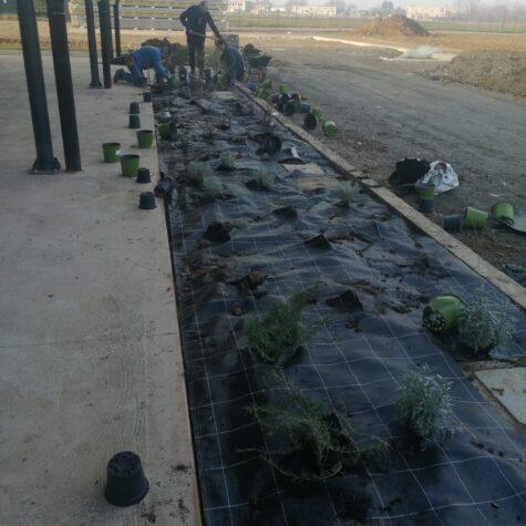 impianti irrigazione giardino bergamo