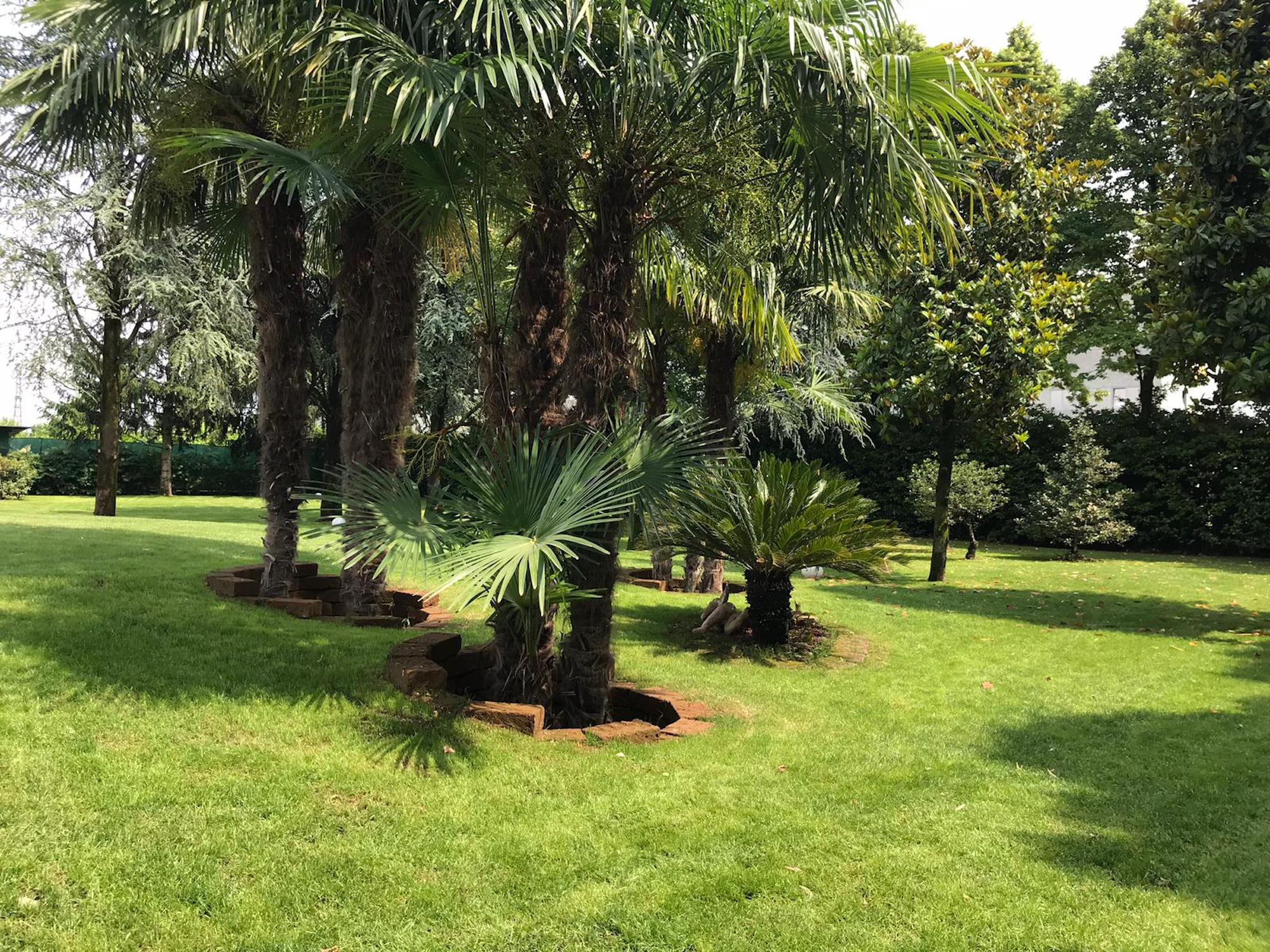 progettazione giardino bergamo