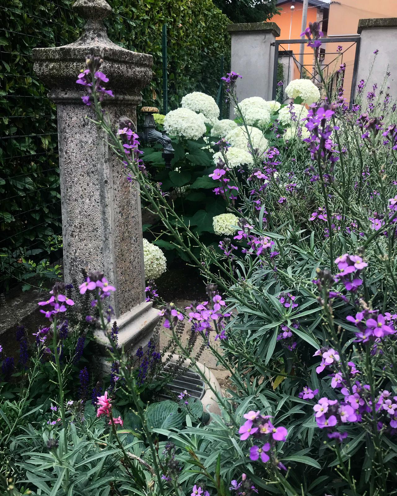 realizzazione giardino bergamo