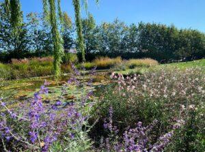campana vivaio giardini bergamo