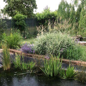 giardini e manutenzione